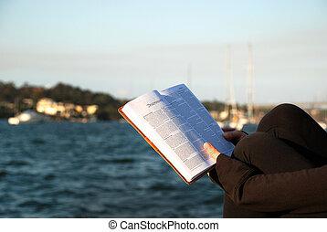 matthew, bijbel, -, boek, lezende