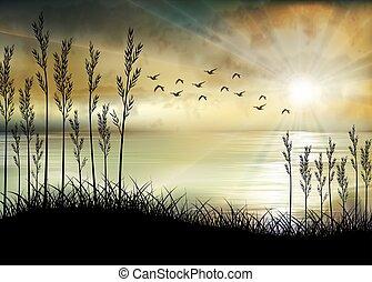mattina, alba, spiaggia, illustrazione