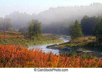 mattina, nebbia, su, il, fiume