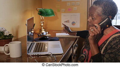 Mature African American woman talking on cordless phone in...