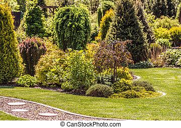 Mature Backyard Garden During Summer Day