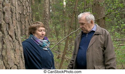 Mature beautiful couple, talking in the woods, standing near a tree. Warm spring evening.