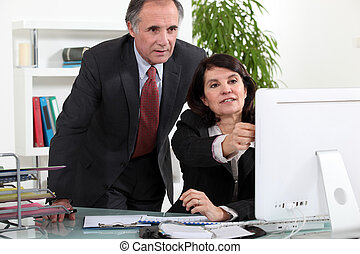 Mature business couple at a computer