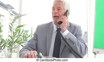 Mature businessman talking on a phone