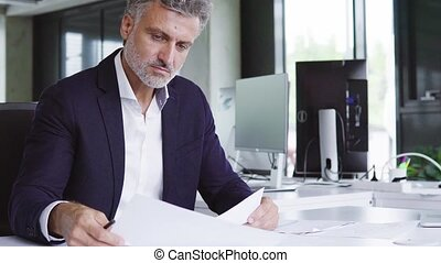 Mature businessman with documents in his office.