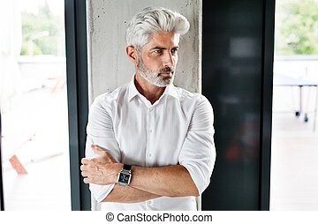 Mature businessman with gray hair in the office. - Handsome...