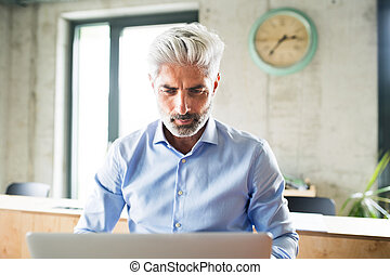 Mature businessman with laptop in creative office. - Mature...