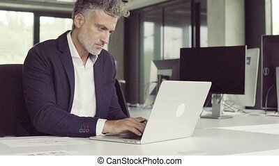 Mature businessman with laptop in the office.