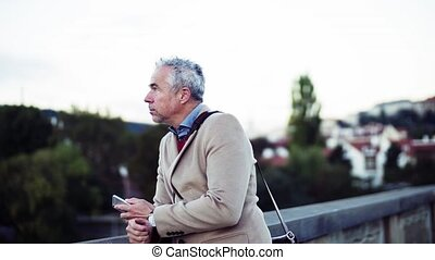 Mature businessman with smartphone standing on a bridge in...