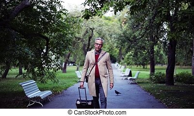 Mature businessman with suitcase walking in a park in a...