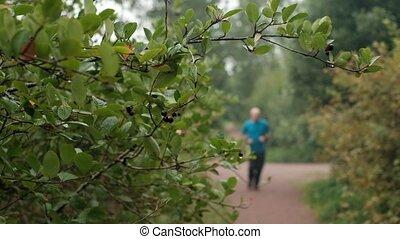 Mature caucasian man in blue t-shirt running outdoor....
