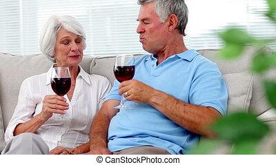 Mature couple enjoying red wine