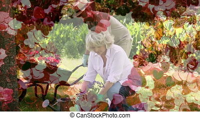 Mature couple gardening with a heart carpet on the foreground