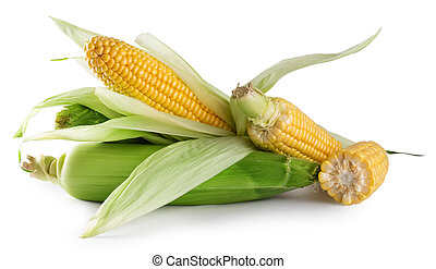 Mature fresh corn with green leaves