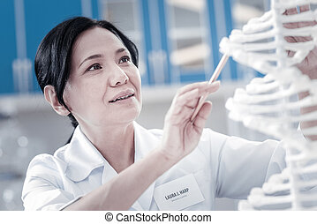 Mature lady analyzing three dimensional model of dna -...