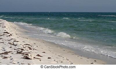 Mature Man Jogging Beach - Barefoot mature man jogs up the...