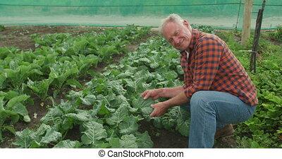 Mature man working on farm - Portrait of a mature Caucasian ...