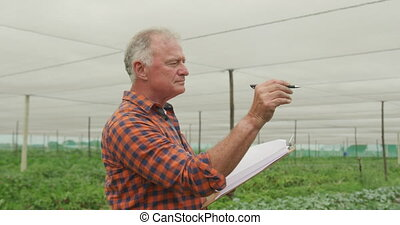 Mature man working on farm - Side view of a mature Caucasian...