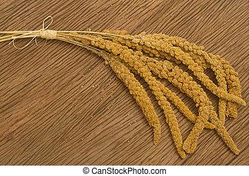 mature millet ,bird food on wooden background