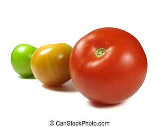 Mature - Growing tomatoes from green to red