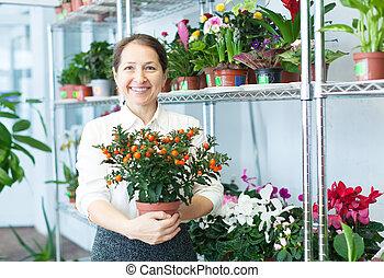 mature woman chooses Calamondin at  store