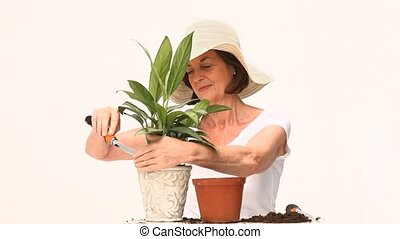 Mature woman doing some gardening isolated on a white...