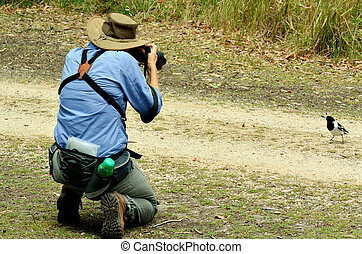Mature woman photographing wildlife - Mature woman with ...