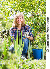 mature woman planting lily in garden.