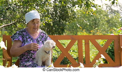 Mature woman playing with her dog sitting outdoors near his home