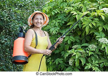 Mature woman spraying  plant