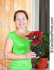 woman with Poinsettia flowers in flowering pot - Mature ...