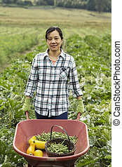 Mature women with Wheelbarrow of Vegetables