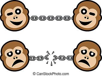 mau, bom, macaco