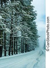 mau, estrada, condições, enquanto, dirigindo, em, inverno