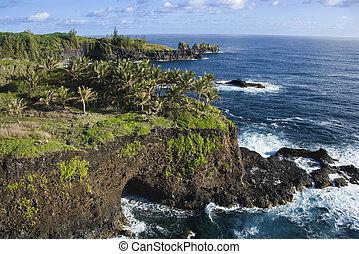 maui, 岩が多い, coast.
