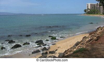 Maui Beach Scene - waves coming ashore along a maui beach