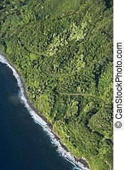 Maui coast with road.