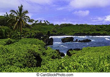 Maui East Coast - Lush tropical green contrasts the clear...
