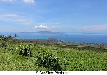 Maui Hawaii Upcountry Landscape - Landscape looking towards...