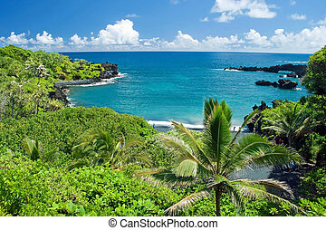 maui, insel, hawaii, paradies