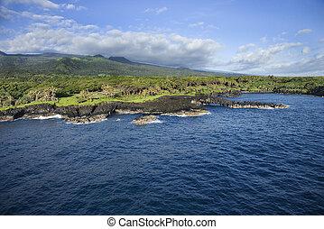 Maui landscape.