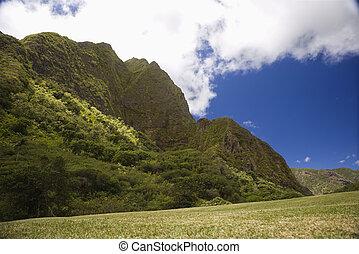 Maui mountain landscape.