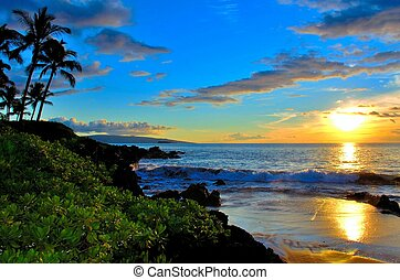 maui, palm strand, ondergaande zon , bomen