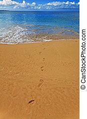 maui, praia, makena