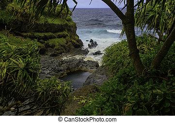 Isolated natural pool on the Maui south coast