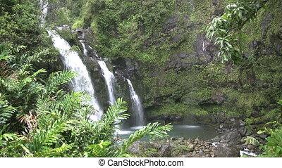Maui Waterfall - a triple tropical waterfall on the island...