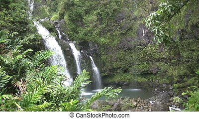 Maui Waterfall - a triple tropical waterfall on the island...