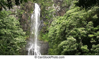 Maui Waterfall - a scenic waterfall along the road to hana...