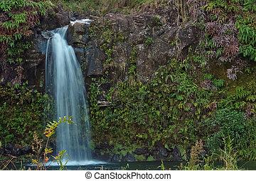 Maui waterfall off the road to Hana - A beautiful tiered...