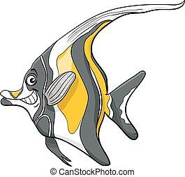 maure, caractère, fish, idole